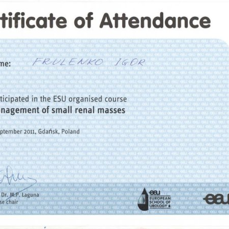 "2011 - Gdańsk - ""Managements of small renal masses"" ESU course"